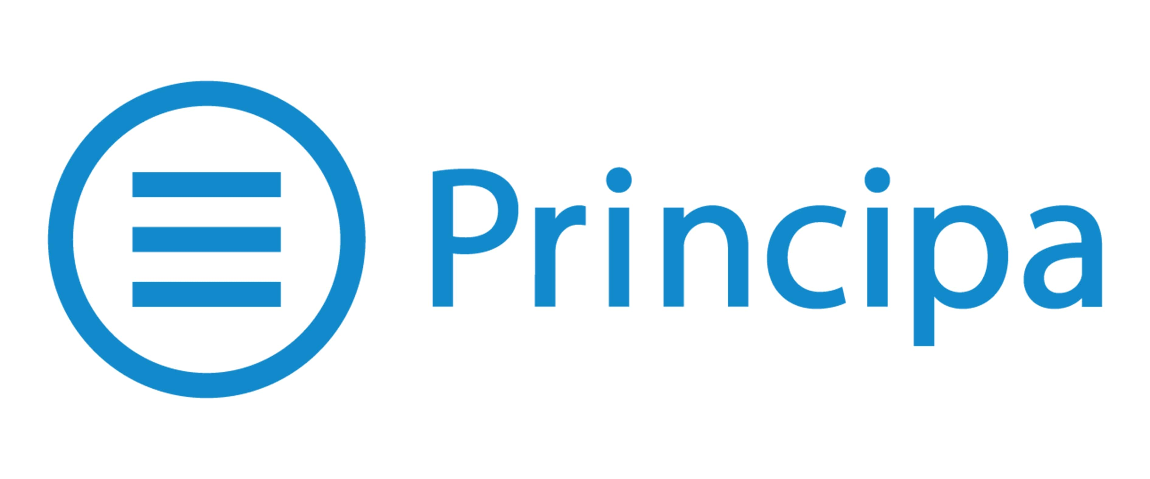 Principa Logo | Data Analytics, Consulting & Software